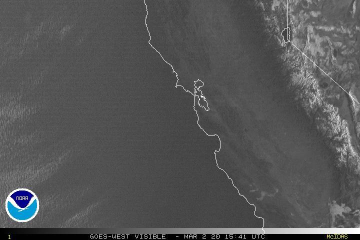Bay Area Visible Satellite
